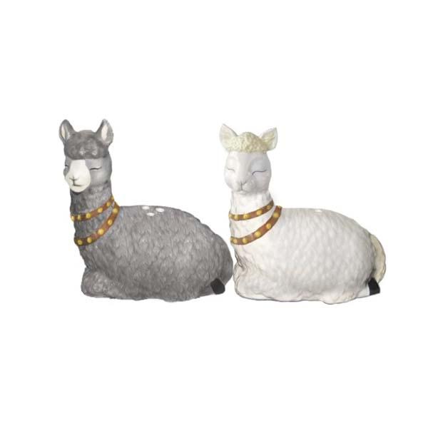 S & P Shakers Alpaca