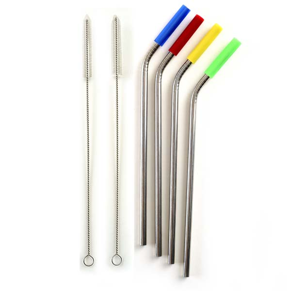 Nylon Tip SS Straws & Brush